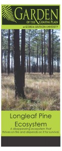CPN LongleafPineEcosystem2_Page_1