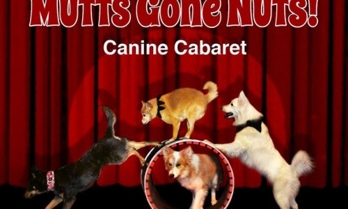 Mutts_Nuts_Pix_hires